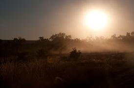 Mornington-6