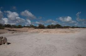 Hamlin Pool und Stromatoliten-4375
