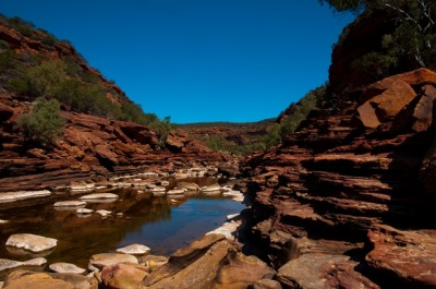 Kalbarri Nationalpark-4679