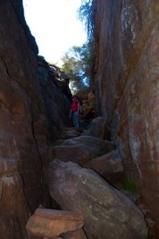 Kalbarri Nationalpark-4701