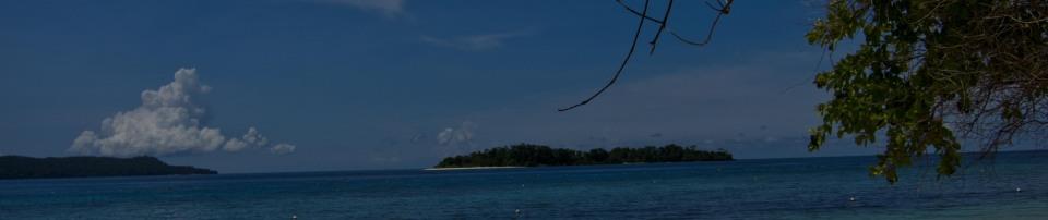 Header Insel-1