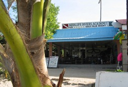 Aqualife Tauchshop, Boracay 2001