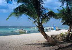 """Meine"" Palme am White Beach, Boracay 2001"